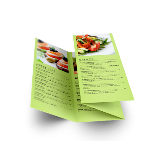 11x17 Double Parallel Fold Brochures printing